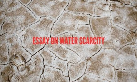 Essay on Water Scarcity