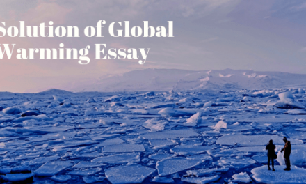 Solution of Global Warming Essay in English
