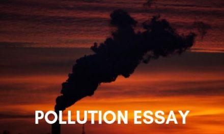 Pollution Essay in English for School Kids & Children