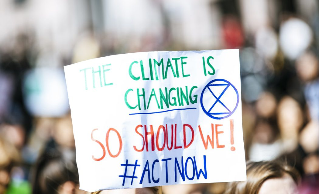 Changing a schools climate dissertation